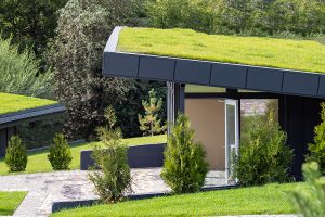 What Is Green Roofing?