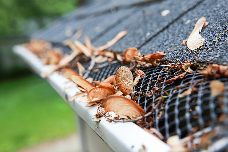 All About Gutter Guards: Types & Sizes